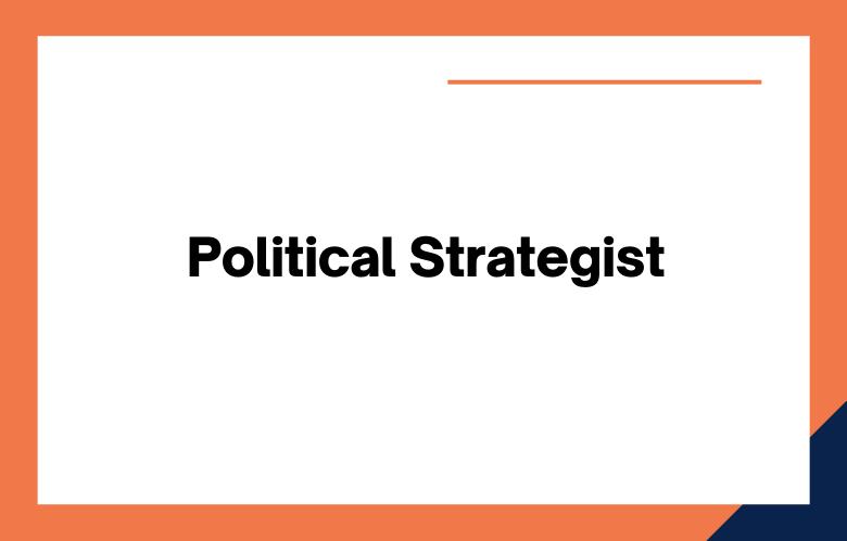 Political Strategist
